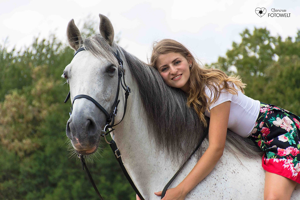 Pferd-Ghandi-3.jpg