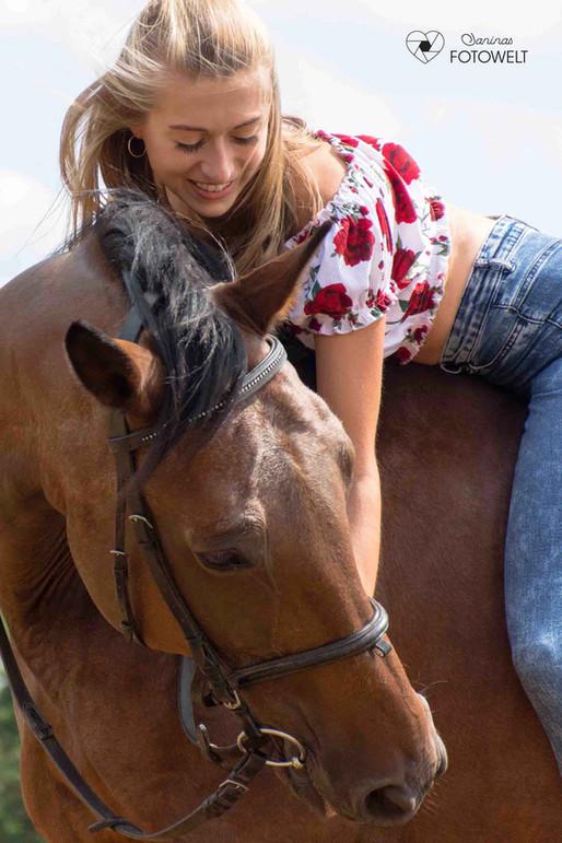 Pferd-Avelino-jw.jpg
