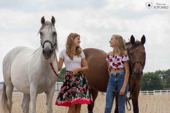 Pferde Avelino und Ghandi - 2.jpg