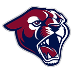 team_logo_generic_baseball.256.png