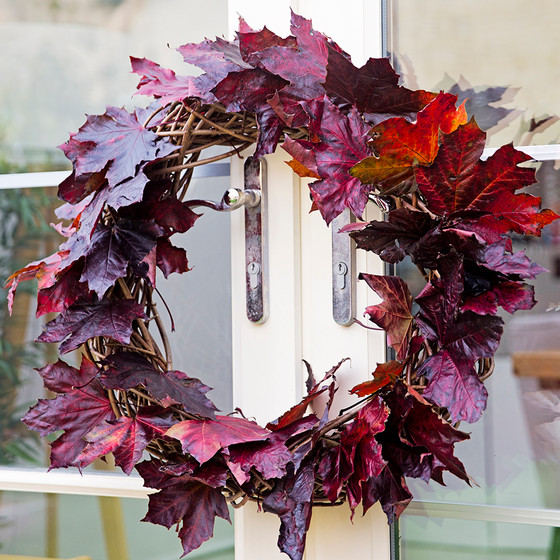How to make your own Autumn wreath!