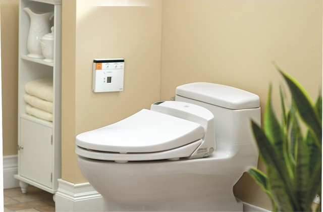 Toilet with washlet bidet