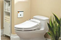 Toilet with washlet bidet