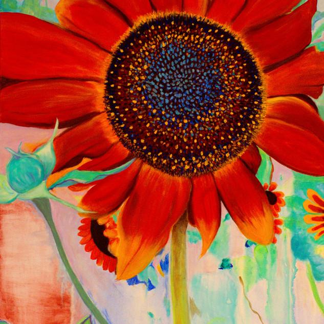 N° 47: Sunflower