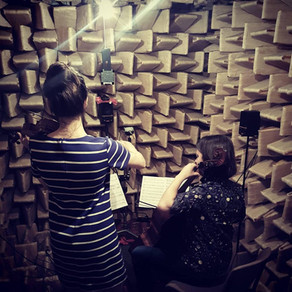 Anechoic Experiments