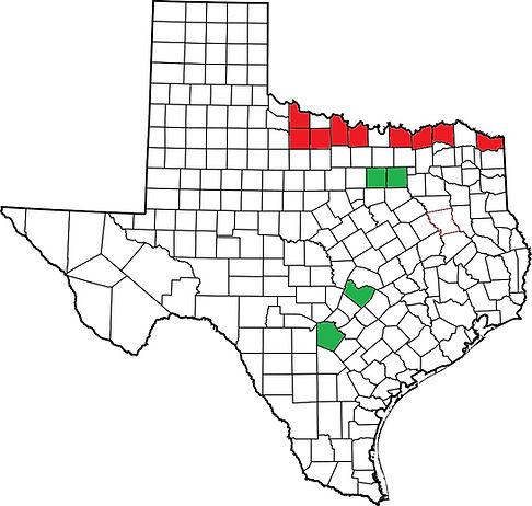 Texas G. ouachitensis.jpg