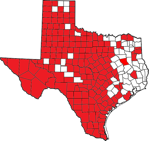 Texas K flavescens.png
