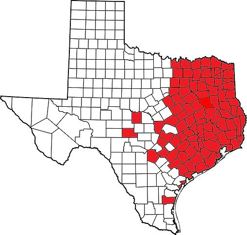 Texas. T. c. triunguis.png