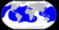 1920px-Dermochelys_coriacea_map.svg.png