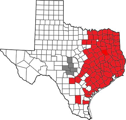 Texas K. subrubrum.png