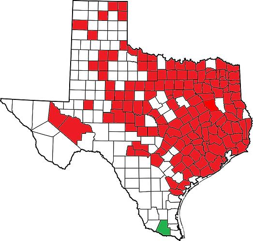 Texas C. serpentina.png