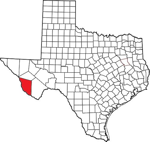 Texas K. hirtipes.png