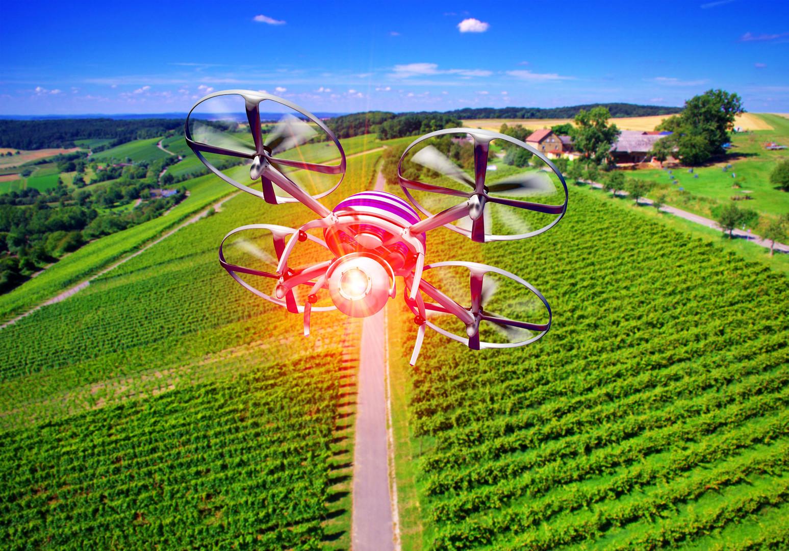 Drohne Landwirtschaft 17 .jpg