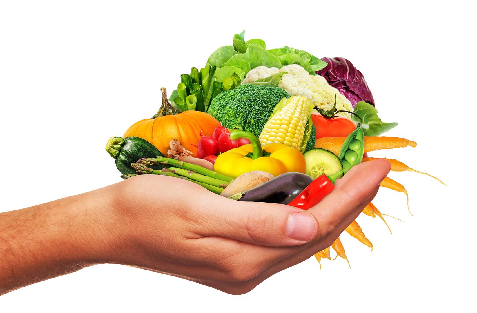 Hand_Gemüse_17_.jpg