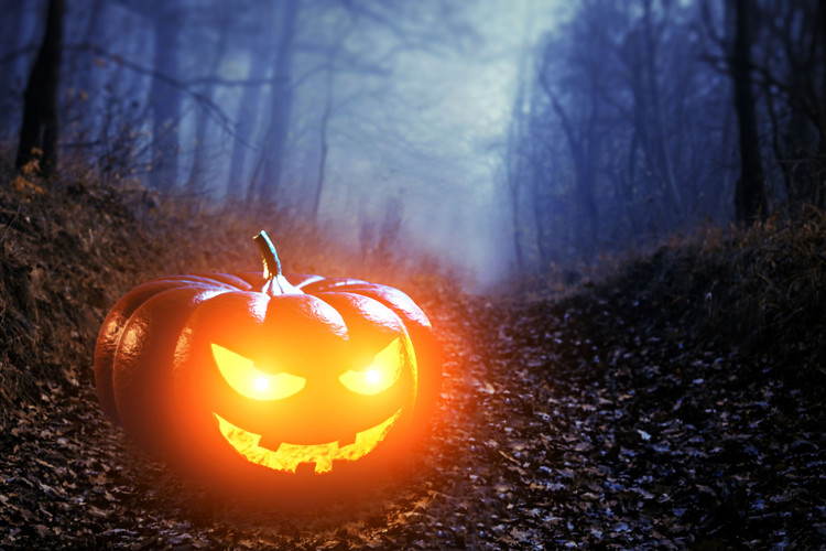 Halloween_Wald_Kürbis_16_c.jpg