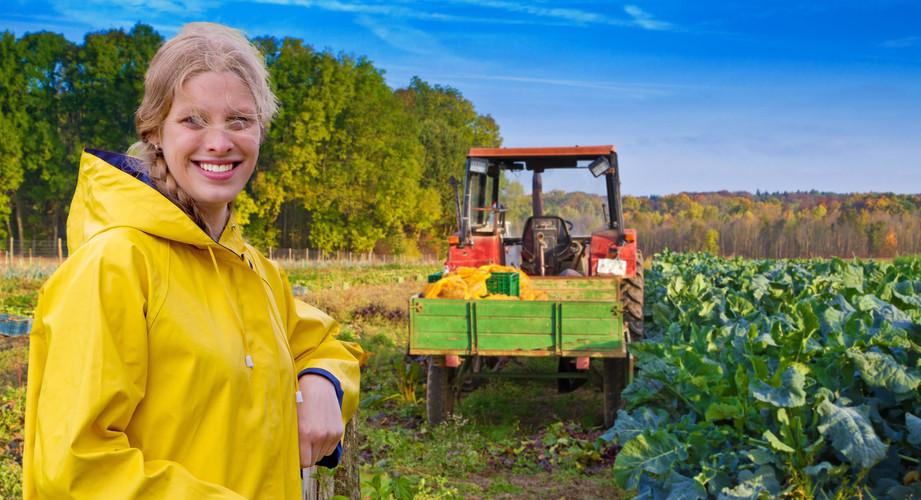 Melinda Ernte im Herbst 16 Traktor 2.jpg