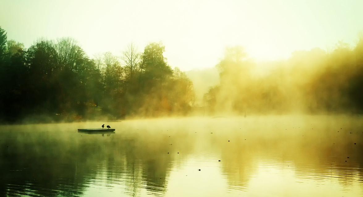See Nebel Herbst 16.jpg