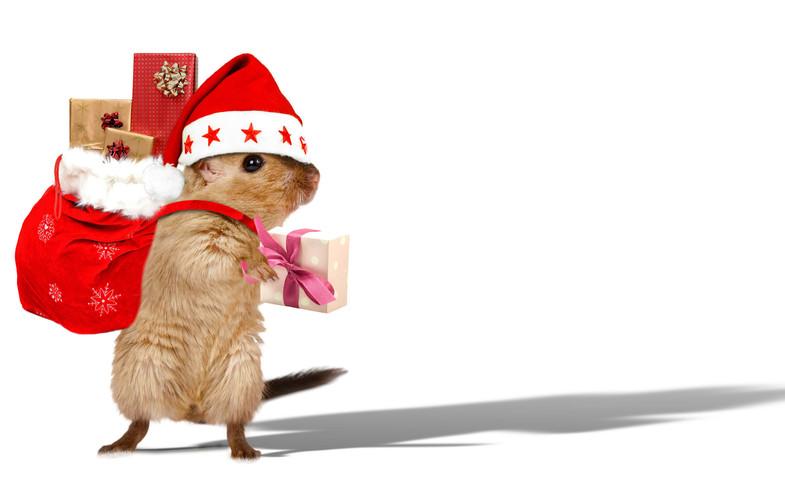 Hamster Weihnachten frei 3.jpg