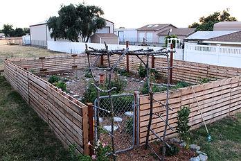 Sunkissed Botanics Herb & Flower Garden, Turlock California