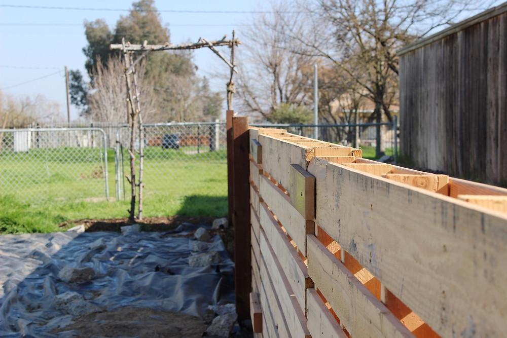 Kitchen garden with pallet fence // Sunkissed Botanics Blog