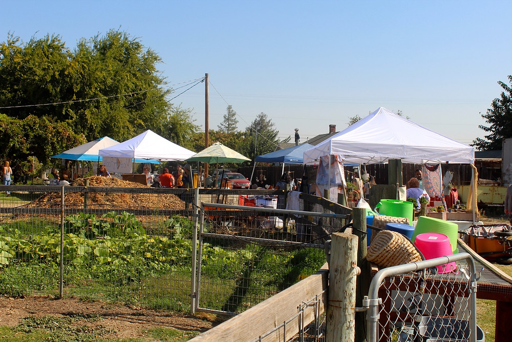 Fall Harvest Celebration | Nourish Farm Turlock
