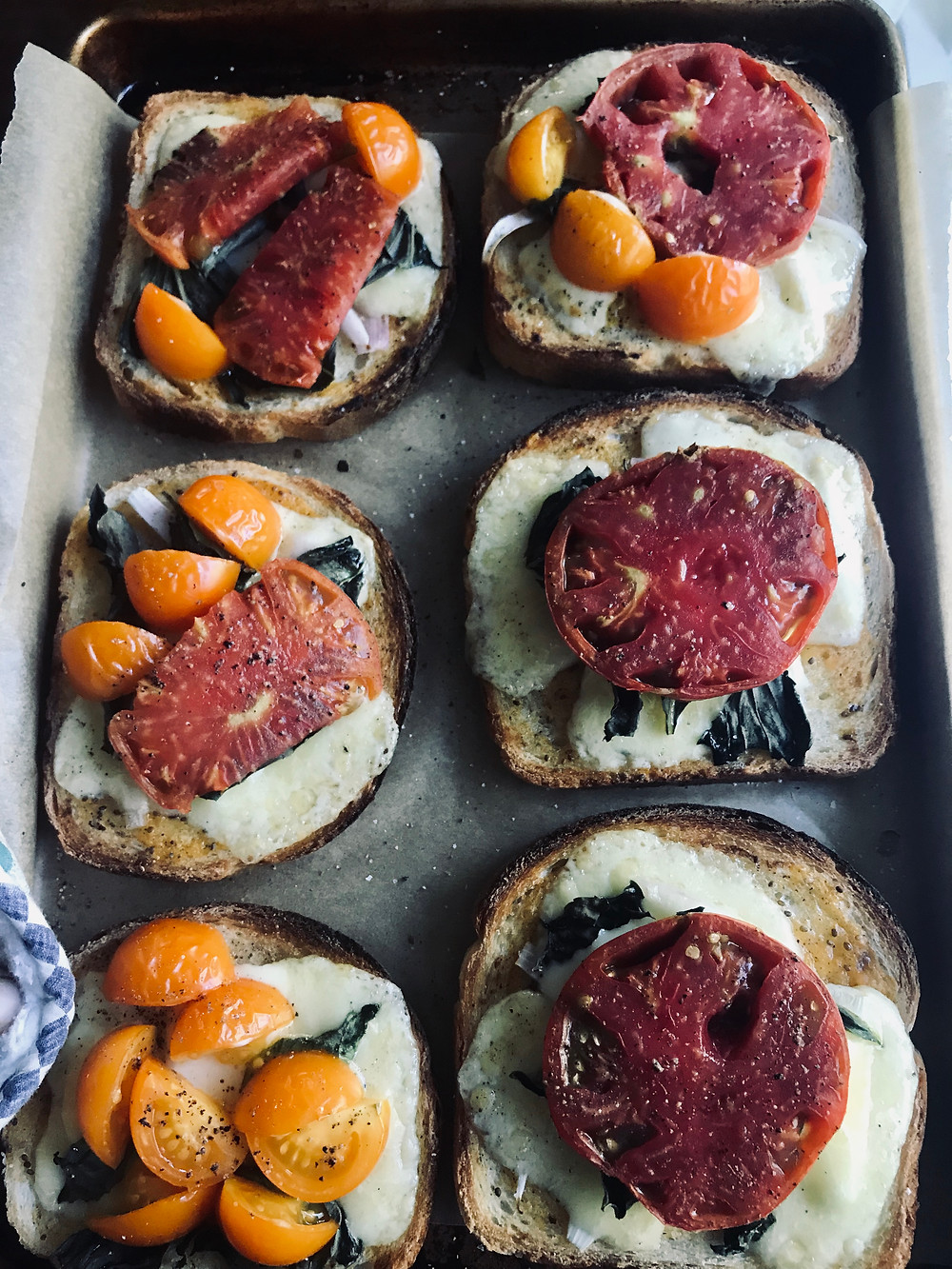 Grilled cheese with tomatoes recipe | Nourish Farm Turlock