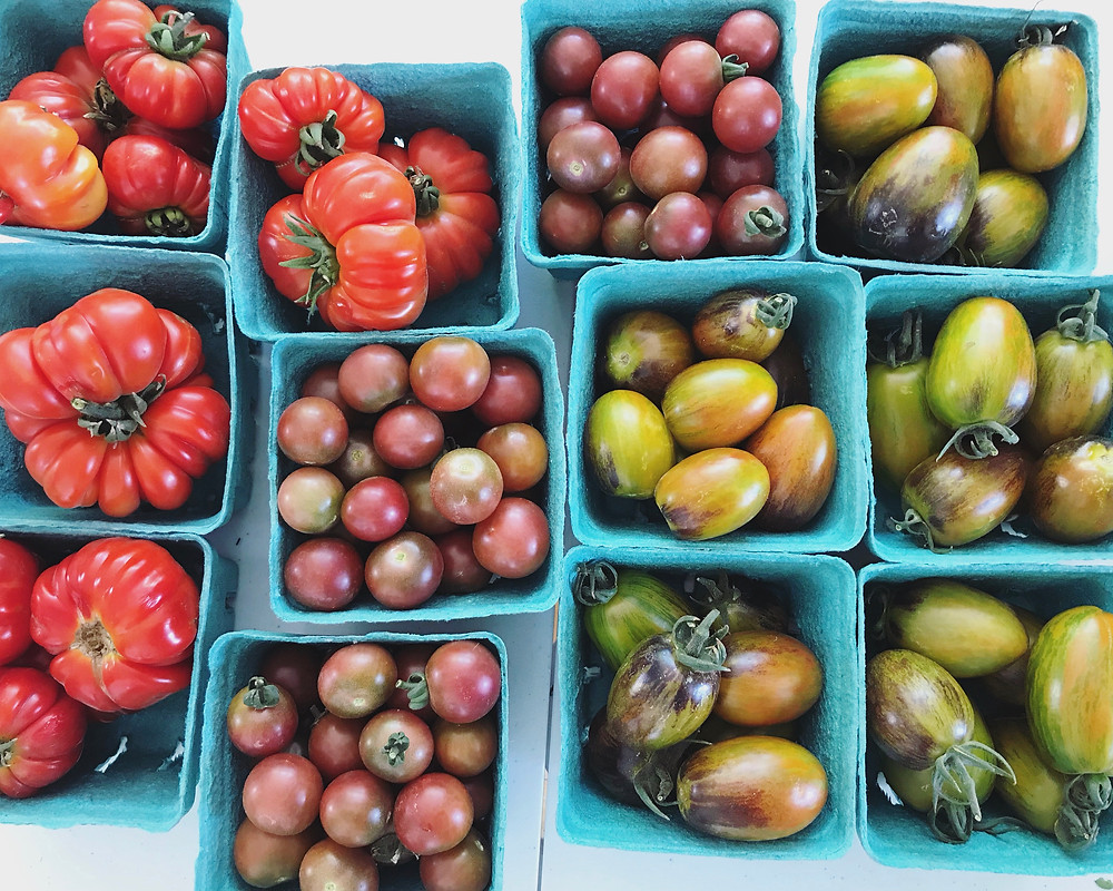 Heirloom tomatoes | Nourish Farm Turlock