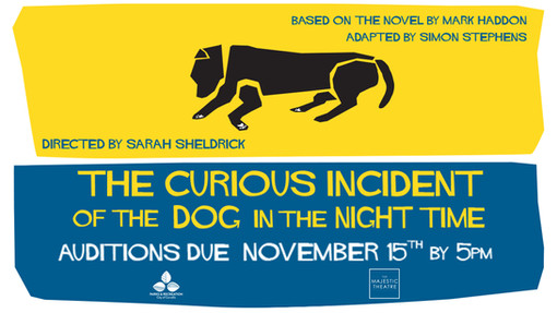 OPEN AUDITIONS: The Curious Incident of the Dog in the Night Time