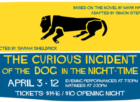 Curious Incident of the Dog in the Night-Time Cast List!