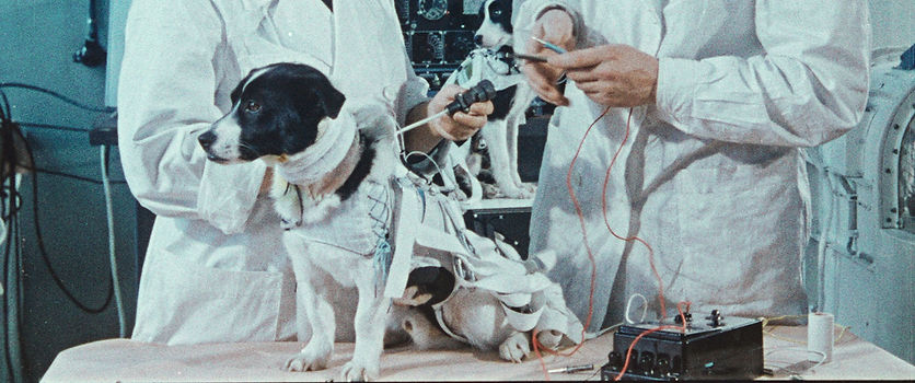 SpaceDogs_Still_02_web.jpg