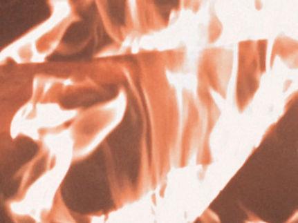 Photo 2 Screen_Shot_2020-09-25_at_5.24.4