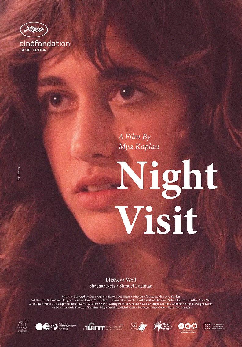 Night Visit Poster.jpg