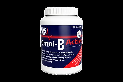 Omni-B Active 120.00