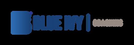 BI logo_BI_7 (1).png