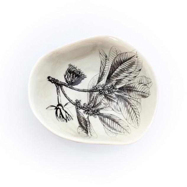 Coleção dos Bowls em Pétalas Botânico 10