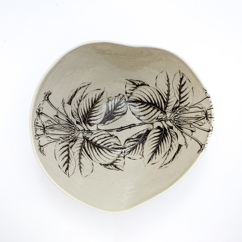 Coleção dos Bowls em Pétalas Botânico 4