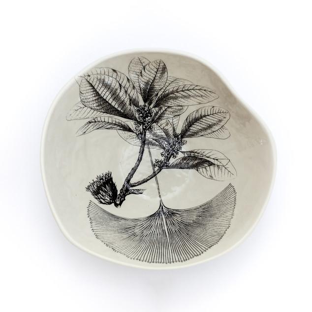 Coleção dos Bowls em Pétalas Botânico 2