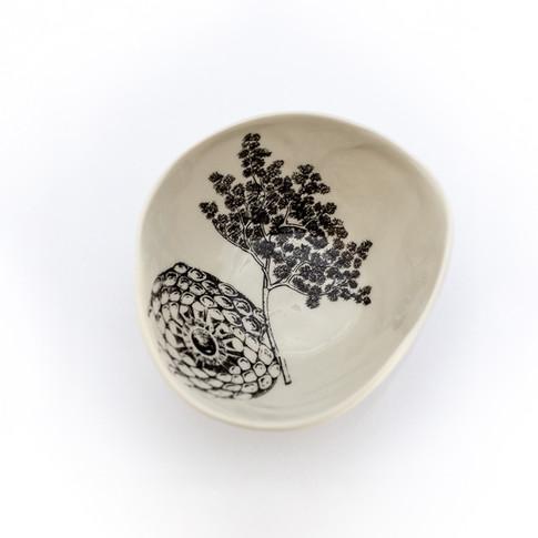 Coleção dos Bowls em Pétalas Botânico 22