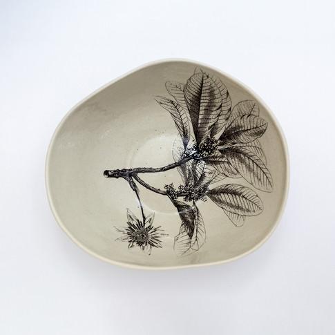 Coleção dos Bowls em Pétalas Botânico 7