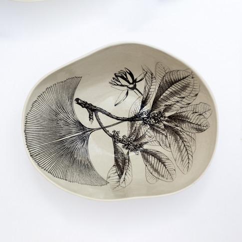 Coleção dos Bowls em Pétalas Botânico 12