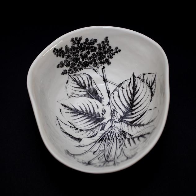 Coleção dos Bowls em Pétalas Botânico 13