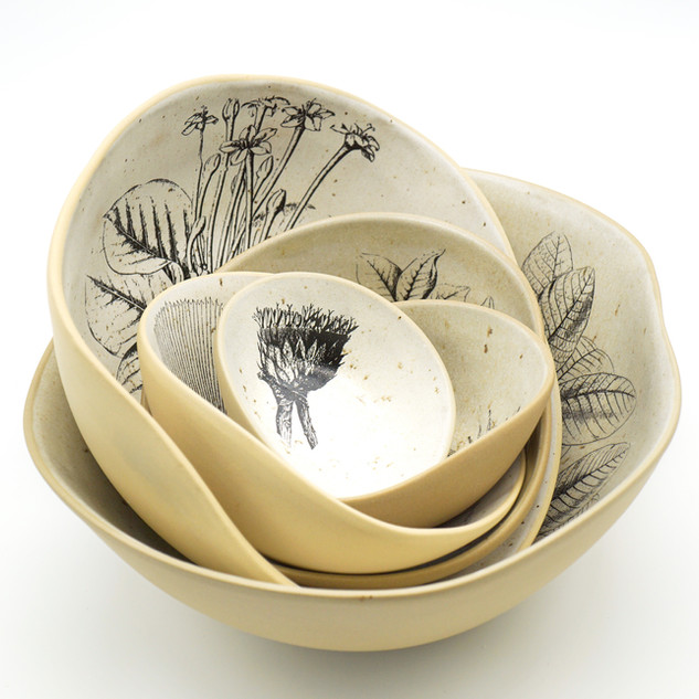 Bowls em Pétalas Botânica