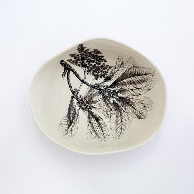 Coleção dos Bowls em Pétalas Botânico 11