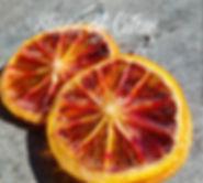 PicsArt_01-11-10.32.24.jpg
