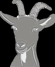 Goat Veterinarian