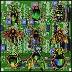 VKR12010.SpecimenBox.RecordCover_web.jpg