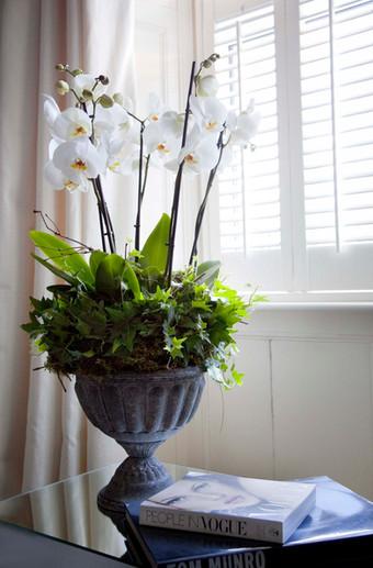 flowers  39.jpg