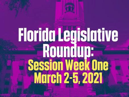 FL Legislative Roundup: Session Week One 3/2 - 3/5