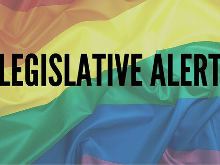 Legislative Alert: Anti-LGTBQ+ Youth, Unsafe Schools and More