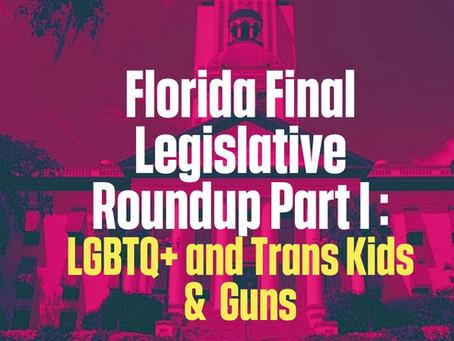 FL Final Leg Roundup Part I: LGBTQ+ and Trans Youth & Guns